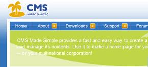 cms made simple - intressant publiceringsverktyg